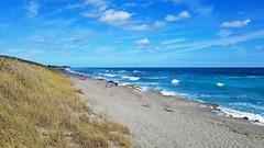 Seaside and Beach Dunes (Sun~Lover) Tags: hobesound florida jupiterisland dunes waves atlanticocean seaside blue skies sand rocks limestone