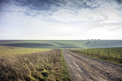 The Road and the Lynchets (stevedewey2000) Tags: salisburyplain wiltshire landscape waterdeanbottom compton landscapefeatures striplynchet road byway track