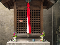 The daily offering (Tim Ravenscroft) Tags: shrine offerings temple gyoganji kyoto japan buddhist shinto hasselblad hasselbladx1d