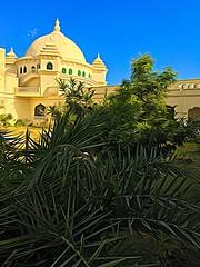 Home from home. My India series (Nick Kenrick.) Tags: rajasthan india hindu googlepixel pushkar exotic travel street iphonese