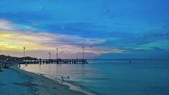 Blue heaven (RP Major) Tags: rye beach mornington penisular port phillip bay water clouds sunset victoria australia landscape lumia 950