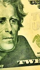 Green - Macro Monday (SPP - Photography) Tags: macromonday green macro money jackson 20