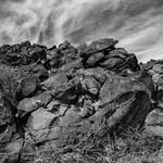 Petroglyphs thumbnail