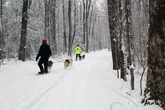 IMG_0051_AutoColor (LifeIsForEnjoying) Tags: snow mushing dog sledding dogs snowboard sled sitka nike kaskae