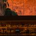 Sunrise from the bar at The Rowan, Palm Springs
