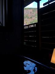IMG_0077 (digitalbear) Tags: digitalbears digital camera team 2019 nakano tokyo japan survived digitalcameras peakdesign blue anchor osechi ryori oshogatsu gantan hakoneyumoto kanagawa hatsuhana soba jinenjo onsen hotspring romancecar odakyu noctilux noctiluxm
