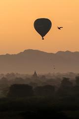 Au-dessus de la plaine de Bagan (Seb & Jen) Tags: bagan myanmar burma birmanie mandalayregion myanmarbirmanie oldbagan nyaungu royaumedepagan bulethi sunrise soleil temple pagoda pagode montgolfiere balloon