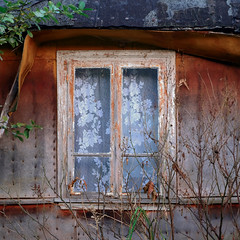 Decay and lace (Jerzy Durczak) Tags: window decay curtain lace