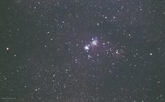 NGC 2264 (Themagster3) Tags: deepsky deepspace ngc 2264 conenebula astronomy astrophotography astrometrydotnet:id=nova3185138 astrometrydotnet:status=solved