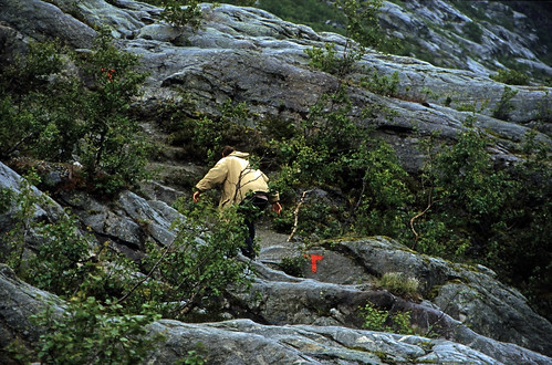 "Norwegen 1998 (238) Nigardsbreen • <a style=""font-size:0.8em;"" href=""http://www.flickr.com/photos/69570948@N04/44315701720/"" target=""_blank"">View on Flickr</a>"