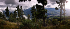 Across (Elkin Vallejo) Tags: forest tree trees landscape city pano panoramica sunrise clouds nature nariño pasto colombia bosque árbol árboles paisaje ciudad panorámica amanecer nubes naturaleza