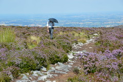 Stiperstones, Shropshire (Seventh Heaven Photography *) Tags: stiperstones shropshire nikon d3200 heather erica wid countryside nature landscape rocks rock hill sky blue person man umberella