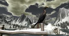 Winter in Second Life -The Heron (Karole Batista) Tags: heron winter secondlife landscapes snow house sky mountains beautiful karolebatista