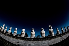 Message to the sky (sKame-rameha) Tags: sculpture sky imitation moai garden monument symbol model cemetery