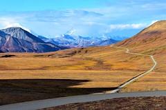 Denali Park Road (thomasgorman1) Tags: road denali wilderness preserve park nature ak alaska mountains landscape nikon