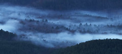 Misty Blue Forest (R. Keith Clontz) Tags: mist fog flowing dreamscape forest northcarolina keithclontz linvillegorge shortoffmountain blue trees silhouettes