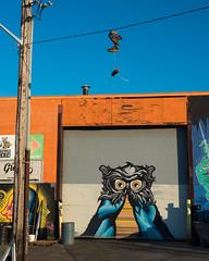 Beauty of Life-4062.jpg (bryanstewartcreative) Tags: bryanstewartcreative graffiti shoes laces graffitiart streetart art painting paintings street city detroit detroitgraffiti streetgraffiti michigan thegreatlakesstate michiganawesome awesomemitten mittenmichigan nikon nikond750 d750 blue mural owl owls midtowndetroit electriclines electricity vibrant vibrance