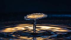 Water Drop (Dave6163) Tags: splash strobist macro water drop fuji blue gold