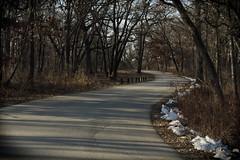 On The Road Again, Morton Arboretum. 8 (EOS) (Mega-Magpie) Tags: canon eos 60d outdoors nature street road drive the morton arboretum lisle dupage il illinois usa america
