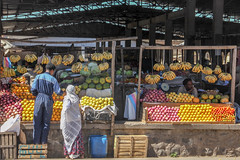 2011_Eritrea (s_andreja) Tags: