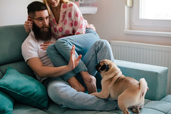 What To Do If You Don't Like Your Partner's Pet But You Don't Want To Hurt Bae's Feelings (alsfakia) Tags: wisdom by alexandros g sfakianakis anapafseos 5 agios nikolaos 72100 crete greece 00302841026182 00306932607174 alsfakiagmailcom animal beard beautiful blond bright casual caucasian companionship cool couch couple dog female friend friendship glasses happiness happy hipster home horizontal house inlove indoor love male man naturallight people pet positive pug relax style stylish togetherness urban woman young