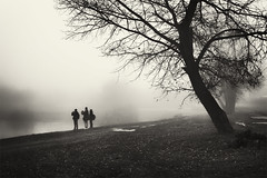 fog near lake (Pomo photos) Tags: boy people child children lake river fog mist misty surreal landscape tree trees grass winter evening sepia brown lowlight city cityscape street urban memory water pond park branch branches leaf leaves grain blackandwhite blackwhite bw monochrome mono fujifilmxa3 fujifilm sky ground land
