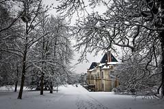 Jour de neige au Château de la Malmaison (Lucille-bs) Tags: europe france iledefrance hautsdeseine rueilmalmaison château châteaudelamalmaison neige arbre paysage architecture parc hiver