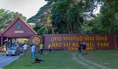 53673-Khao-Yai (xiquinhosilva) Tags: 2017 dongphayayen hintung khaoyai mueangnakhonnayokdistrict nationalpark park thailand unescoworldheritage tambonmusi changwatnakhonratchasima th