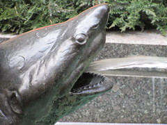 Shark Fountain - 30 Rockefeller Plaza NYC 9558 (Brechtbug) Tags: 30 rock rockefeller plaza center fountain with fish riders sculptures off 5th ave near 49th 50th streets entrance sea creature tentacles nyc 011019 new york city octopus arms wrapping around statue sculpture january 2019