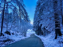 Winter forest near Breitenau, Bavaria, Germany (UweBKK (α 77 on )) Tags: bavaria bayern germany deutschland europe europa iphone winter snow cold forest tree road path blue breitenau kiefersfelden