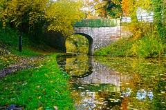 Shropshire Union Canal (Ugborough Exile) Tags: gnosall stafford staffordshire midlands england uk sony a6300 2018