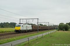 ECR 186 166 De Pinte (TreinFoto België) Tags: db ecr euro cargo rail traxx bombardier 34443 186 1665 de pinte novelis bressoux nievenheim dollands moor 48400 lijn 75 belgië belgium belgique belgien