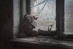 hug me (jkatanowski) Tags: urbex exploration europe poland decay dust dark toy derelict abandoned forgotten lost lostplace teddy creepy sad window interior urban sony a7m2 1740mm oncewashome