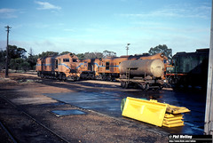 3807 XA1413 XB1020 XA1401 G51  Narrogin Loco Depot 19 June 1983 (RailWA) Tags: railwa philmelling westrail 1983 narrogin loco xa1413 xb1020 xa1401 g51