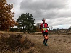 haarlerbergloop 10 km (81)