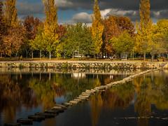 O rio reflecte o Outono (lamartinedias) Tags: chaves agua arvore cor folha outono poldras reflexo rio riotamega tamega