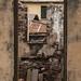 Elmina still life