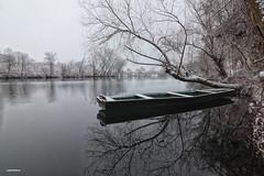 In the boscage (malioli) Tags: tree branch boscage boat river water winter snow korana karlovac croatia hrvatska europe canon