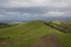 Delicate rainbow over Prefumo Canyon (Lisa Roeder) Tags: prefumo prefumocanyon landscapes greenhills rainbow
