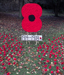 1914-1918 (Rachel Dunsdon) Tags: 2018 worcester poppies 19141918