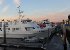 004 Other Ships Docked At Marina Del Rey Fisherman's Village (saschmitz_earthlink_net) Tags: 2018 california marinadelrey boat parade marinadelreyboatparade christmasparty suez