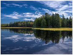 Acadia (5) (hoedh) Tags: 645z pentax 55mm acadia nature lake trees medium format