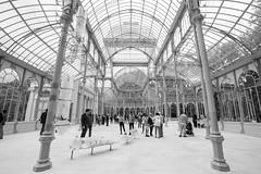 Palacio de cristal (Jose_edit) Tags: palacio cristal parque retiro madrid estructura metálica cristaleras de del buen personas atrio arquitectura habitación gente edificio tragaluz tejado techo reloj geometría