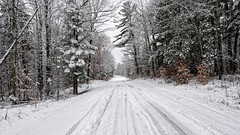 Endless tranquility / Calme sans fin (GEMLAFOTO) Tags: calme tranquility snow neige road winter