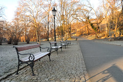 Grebovka Park (2) (DJ_Black_Tea) Tags: park nature trees bench