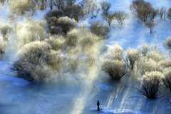Icy River 冰河 (MelindaChan ^..^) Tags: innermongolia china 内蒙古 icy river tree steam sun shine plant nature chanmelmel mel melinda melindachan 冰河 冰 河 snow white 雪 bashang 壩上
