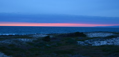 DSC_0739 (afagen) Tags: california pacificgrove asilomarstatebeach montereypeninsula asilomar beach pacificocean ocean sunset