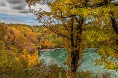 Autumn Whirlpool Canada (HisPhotographs.com) Tags: canada niagarafalls whirlpool niagarariver niagarawhirlpool water trees fall colors autumn red yellow green orange clouds bluesky whirlpoolniagara