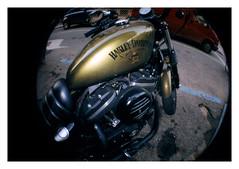 Harley - lomo (P10NERO) Tags: lomo lomografia lomography fisheye ojo de pez harley moto 35mm analogica analogic camera