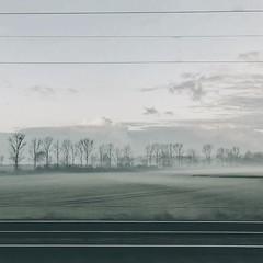 Bodennebel #nebel #mist #cold #grey #kälte #grau #pendeln #commute #train #Zug #Tracks #Gleise #vsco #vscocam #cologne #köln #feld #field